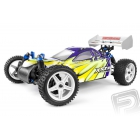 HiMOTO buggy 1:10 elektro RTR set 2,4GHz green